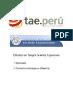 Estudios en Terapia de Artes Expresivas2014