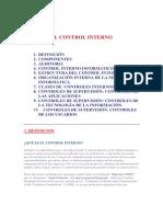 El Control Interno (1)