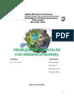 PROBLEMAS AMBIETALES CON INCIDENCIA MUNDIAL.docx