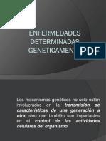ENFERMEDADES DETERMINADAS GENETICAMENTE