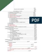 plan afaceri cof.docx