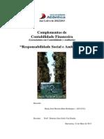 """Relatório de trabalho sobre """"Responsabilidade  Social e Ambiental nas Empresas"""""""
