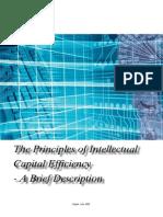 Principles 2008 - Ante Pulic VAIC