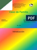 Diapositivas Caso de Fanilia Klendy