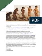 evolucion.docx