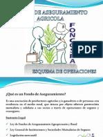 Fondo de Aseguramiento Foncospa.pdf