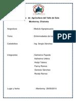 Informe Enfermedades Cerdo