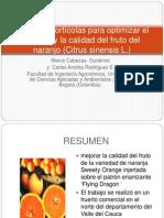 ESTUDIO CASO FISIO PRODUCCION Técnicas Hortícolas Para Optimizar El Tamaño y La