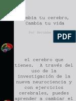 14515890-Brain