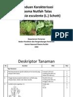 Panduan Karakterisasi Colocasia es