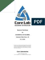 CC3 Well PVT Final Report