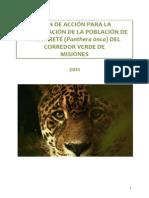plan_accion_yaguarete.pdf
