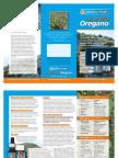Wild Oregano Brochure