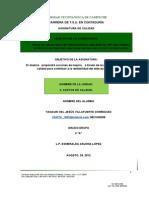 Yanauri Del J. Villafuerte Dominguez
