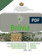 Pa Rdidas Agropecuarias 2004-2011