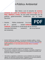 Gestión Publica Clase2013-2