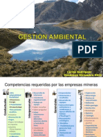 Gestion Ambiental Buenaventura