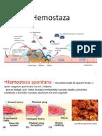 Hemostaza 2014
