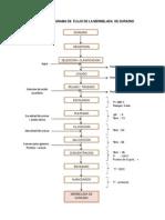 Diagrama de Flujo de La Mermelada de Durazno