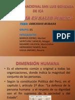 Dimension Humana