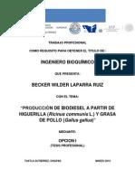 Produccion de Biodiesel BECKER W LAPARRA RUIZ