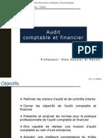 Audit Comptables Et Financiers