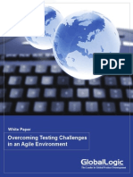 Overcoming Testing Challenges in an Agile Environment