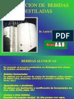 Proceso Productivo de Destilados
