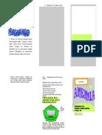 Leaflet PKG