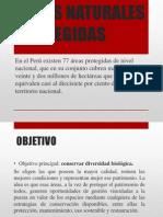 Presentación1 EXPO