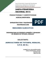 Resumen Ejecutivo Totoapa 2014