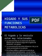 Higado y Sus Funciones Metabolicas
