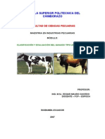 Modulo Clasificacion y Evaluacion Del Bovino Tipo Leche y Carne
