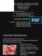 Cirugia Apical