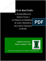 Texto Poster Anais Amicus Curiae Final Office