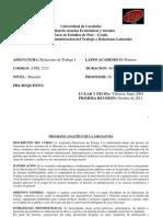Programa Analítico Relaciones de Trabajo I
