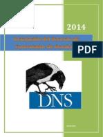 Torres DNS Taller