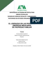 LIDERAZGO en LAS PEQUEÑAS Empresas Mexicanas de Propiedad Familiar p64 BASTAR