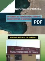 Reserva Paracas