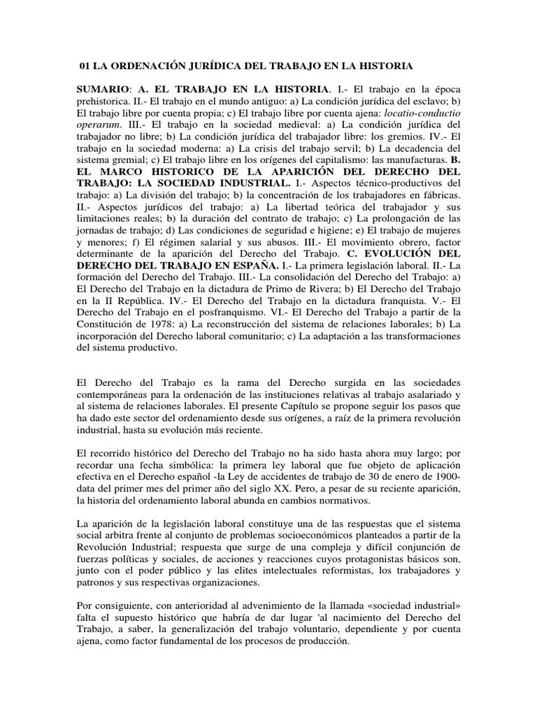 Temas Derecho Del Trabajo I (1)