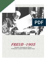 201447_17733_2+Freud+introdução+sexualidade