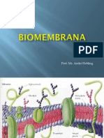 biomemabranas (1)