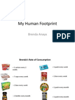 my human footprint