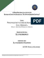Separata2_-_LITISCONSORCIO_VOLUNTARIO_-_183-V