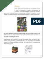 Bioticos_abioticos__Organizacion