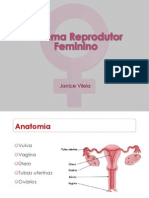 Sistema Reprodutor Feminino - Demo