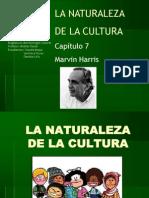 La Naturaleza de La Cultura(2)