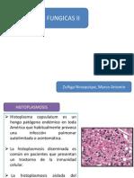 Meningitis Fungicas II