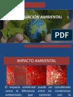 presentación1_evaluación ambiental