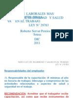 (109653461) ley 29783